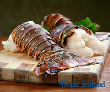 Tropic Seafood - Buying from the Bahamas